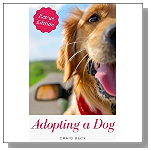 Adopting a Dog: Everything You Need to Know About Adopting a Rescue Dog