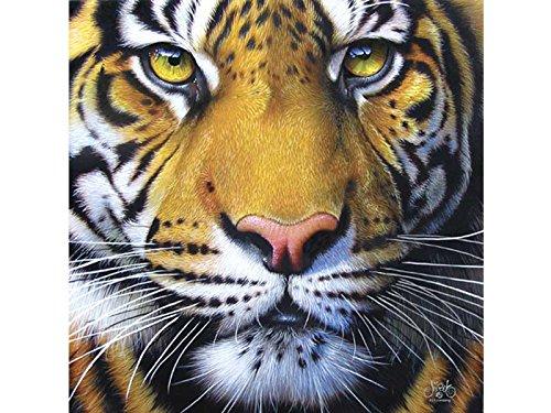 Sunsout 58628 Tigre Dorata Puzzle 1000 Pezzi