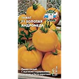 Russian Tomato Golden Andromeda F1 (Early, det, fl/Round Slightly Ribbed, Orange, 65-100g, for juices). Euro 0.05