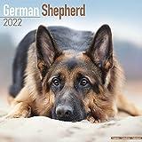 German Shepherd Calendar - Dog Breed Calendars