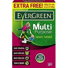 Evergreen Grass Seed Multi Purpose Lawns