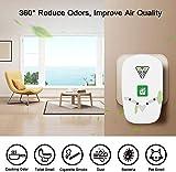 Air Purifier for Home, Plug-in Air