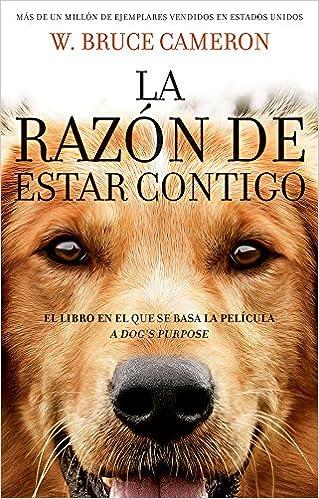 La Razon De Estar Contigo (2017) [BrRip 720p][Latino][MEGA]