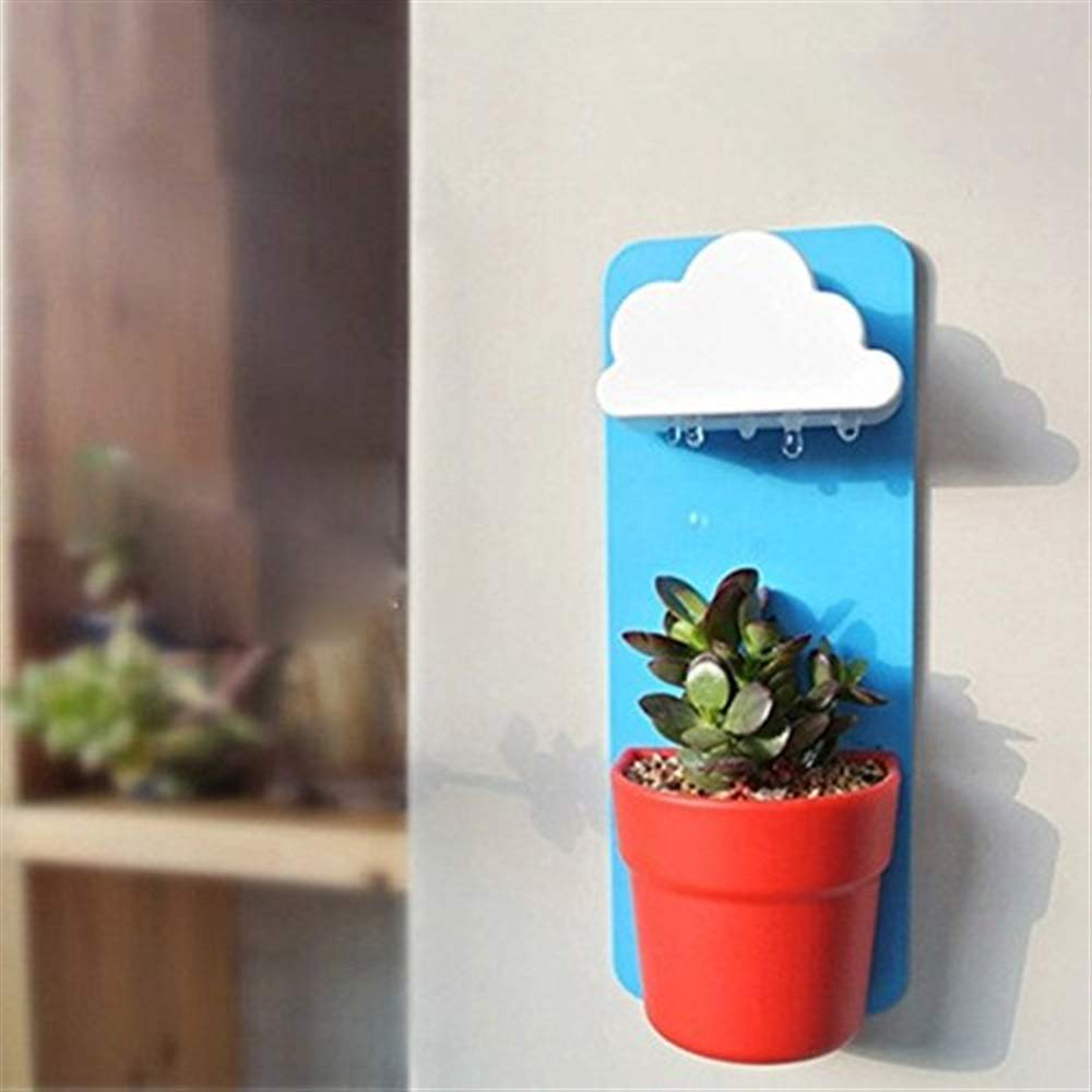 Yingealy Beautiful and Practical 1Pc Indoor Wall Cloud Rainy Pot Hanging Flower Pot