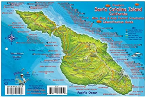 Map Of Catalina Island Santa Catalina Island Dive Map & Kelp Forest Creatures Guide