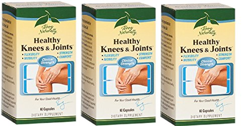 Terry Naturally EuroPharma Healthy Knees and Joints Herbal Formula, 60 Caps - 3 Pack by EuroPharma
