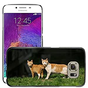 Super Stella Slim PC Hard Case Cover Skin Armor Shell Protection // M00107566 Cat Animal Spring Couples Gaze // Samsung Galaxy S6 (Not Fits S6 EDGE)