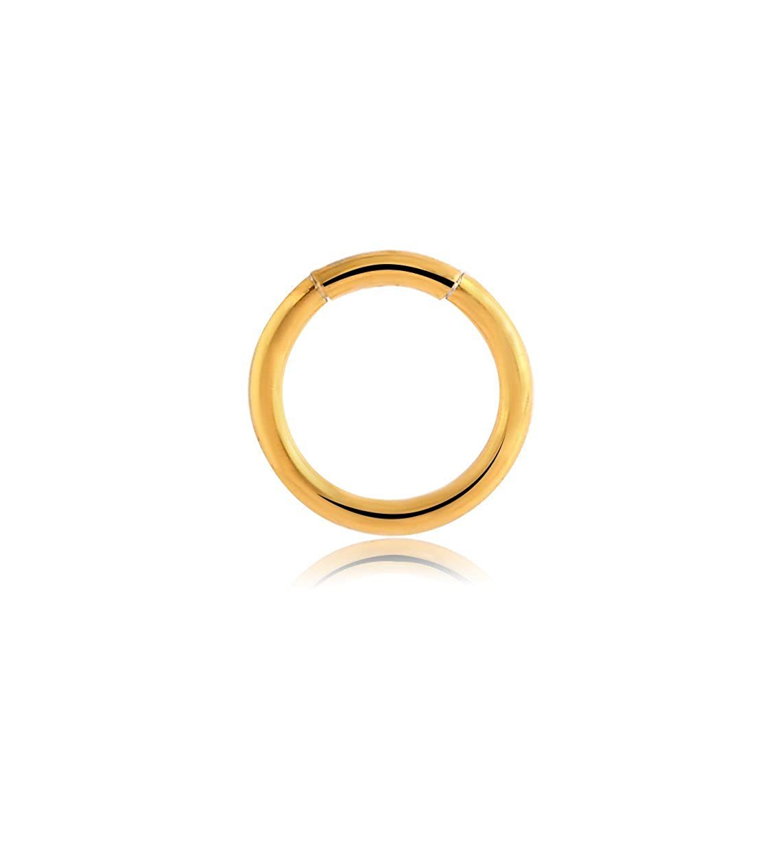 Bubble Body Jewelry Gold Pvd Surgical Steel Smooth Segment Ring 1.2mm Gauge 16g 3//64