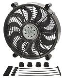 Derale 18212 12'' High Output Radiator Fan