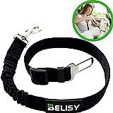 BELISY Hunde-Sicherheits-Gurt fürs Auto - höchste Sicherheit für Dich und Deinen Hund - mit besonders elastischer Ruckdämpfung für maximalen Komfort - passend für alle Hunderassen - höchste Markenqualität