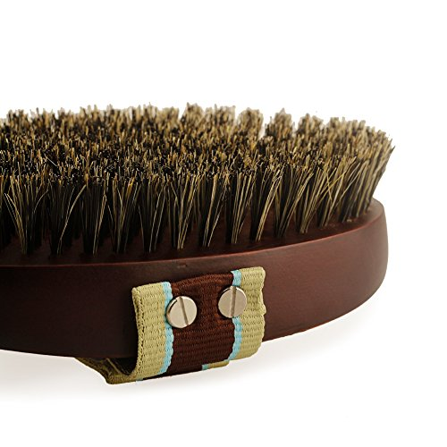 Petfamily-Dog-Grooming-Bristle-Brush-for-short-and-long-hair-Natural-Soft-Boar-Bristle-Brush-with-Adjustable-Hand-Strap-Wooden-Horse-Hair-Body-Brush