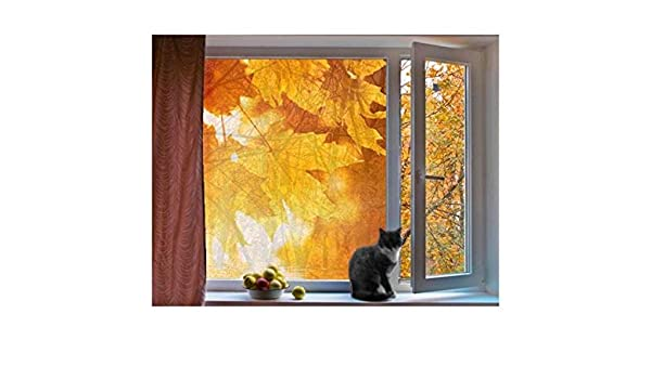 Mural de Ventana Autumn Leaves, Dimensione:54cm x 42cm: Amazon.es: Hogar