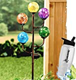 HomeCricket Gift Included- Decorative Solar Powered Glass Balls Garden Globe Light Stake Colorful Led Lights Sculpture + FREE Bonus Water Bottle by Home Cricket