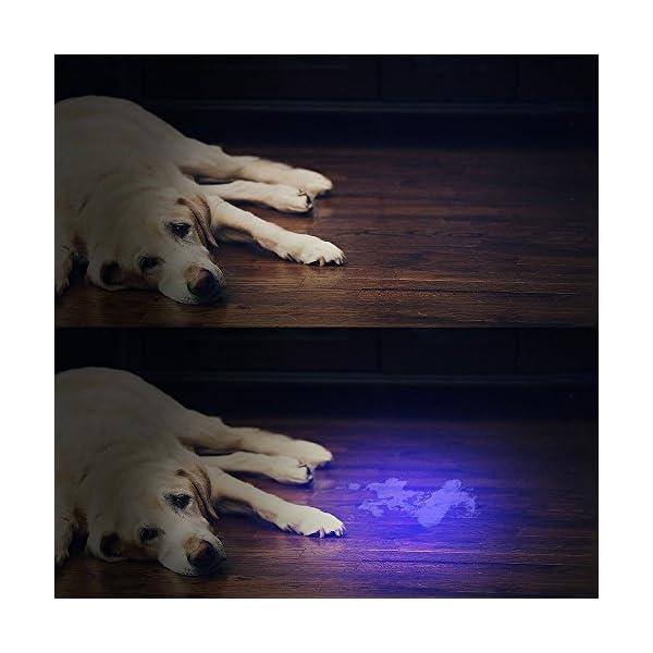 UV-Flashlight-Black-light-UV-Lights-Vansky-51-LED-Ultraviolet-Blacklight-Pet-Urine-Detector-For-DogCat-UrineDry-StainsBed-Bug-Matching-with-Pet-Odor-Eliminator