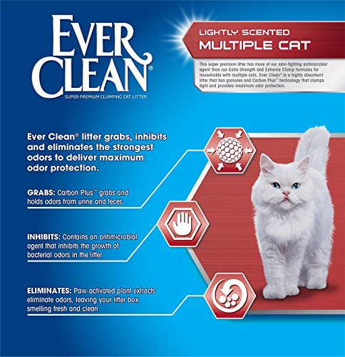 091854712225 - Ever Clean Multiple Cat Litter, 25 Pounds carousel main 2