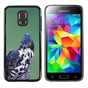 Be Good Phone Accessory // Dura Cáscara cubierta Protectora Caso Carcasa Funda de Protección para Samsung Galaxy S5 Mini, SM-G800, NOT S5 REGULAR! // prey bird hunting black white o