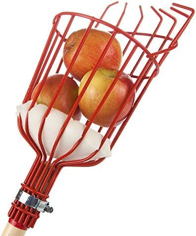 Cesta Recolectora De Fruta para Conseguir Aguacates De Manzana Pera 1,6 Metros Recogedor De Frutas Ajustable En Altura sunflowerany Recolector De Fruta con Canasta De Recogida Naranja Mango