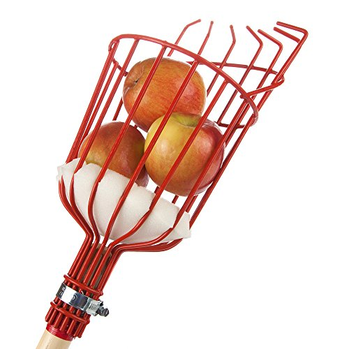 Garden Fruit Basket (Home-X Fruit Picker Harvester Basket With Cushion To Prevent Bruising (pole not included))