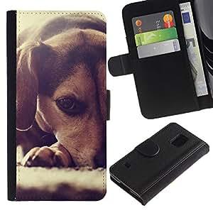 Beagle Puppy Small Dog Foxhound - la tarjeta de Crédito Slots PU Funda de cuero Monedero caso cubierta de piel Samsung Galaxy S5 V SM-G900
