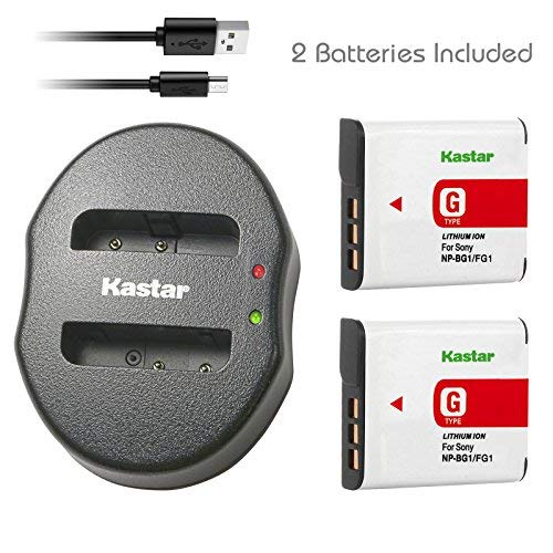 Kastar Battery (X2) & Dual USB Charger for Sony Cybershot DSC-HX5V, DSC-HX9V, DSC-W30, DSC-W35, DSC-W50, DSC-W55, DSC-W70, DSC-W80, DSC-W290, DSC-H10, H20, H50, H55, H70, H90 Battery+ More Cameras by Kastar