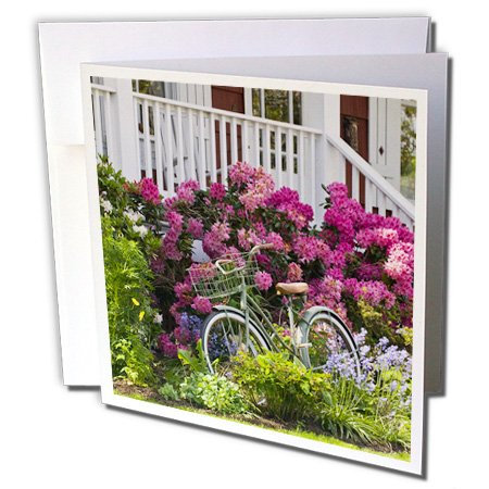 Price comparison product image 3dRose Spectacular spring garden, whimsical antique bicycle - US48 TDR0737 - Trish Drury - Greeting Cards, 6 x 6 inches, set of 12 (gc_96936_2)