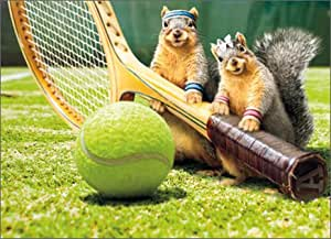 Amazon squirrel tennis love funny birthday card office products greeting cards m4hsunfo