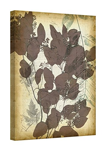 Easy Art Prints Jennifer Goldberger's 'Leaf Letters II' Premium Canvas Art 24 x 18 ()