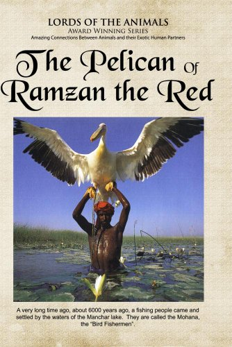 The Pelican of Ramzam Red (Home Use Version)