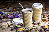Disposable Double Walled Hot Cups - No Sleeves needed Premium 16 oz Insulated Ripple Wall To Go Hot Coffee Tea Chocolate Drinks Perfect Travel ToGo Paper Cup Natural Kraft (500, 16oz Cups + Lids)