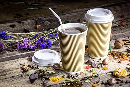 Disposable Double Walled Hot Cups - No Sleeves needed Premium 16 oz Insulated Ripple Wall To Go Hot Coffee Tea Chocolate Drinks Perfect Travel ToGo Paper Cup Natural Kraft (500, 16oz Cups + Lids) (Insulated Condiment Dispenser)