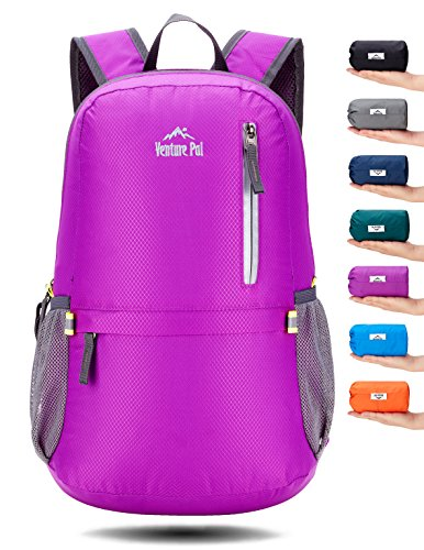 Venture Pal 25L Travel Backpack - Durable Packable Lightweight Small Backpack for Women Men (Purple)