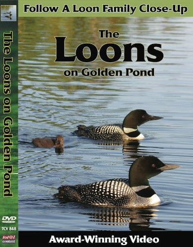 (The Loons on Golden Pond)