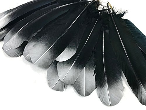 - Turkey Feathers 6 Pieces - Silver Metallic Spray Paint Tip Tom Turkey Rounds Imitation Eagle Secondary Feathers Angel Wing, Halloween Costume.