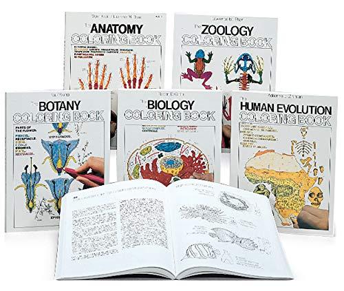 - Anatomy Coloring Book: School Curriculum Sets: Amazon.com: Industrial &  Scientific