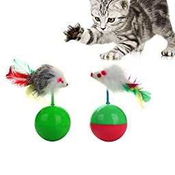 GDPet Cat Toys 10 Pieces Including Cat Teaser Wand Interactive Feather Toy Fluffy Mouse Mylar Crinkle Balls Catnip Pillow for Kitten Kitty