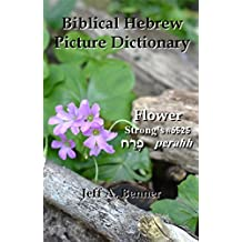 Biblical Hebrew Picture Dictionary