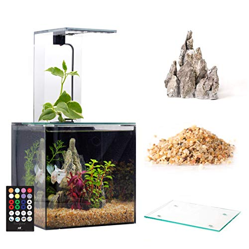 - EcoQube Aquarium - Desktop Betta Fish Tank For Living Office And Home Décor