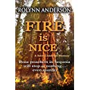 Fire is Nice (A Sable Chisholm Mystery Book 1)