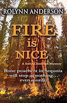 Fire is Nice (A Sable Chisholm Mystery Book 1) by [Anderson, Rolynn]