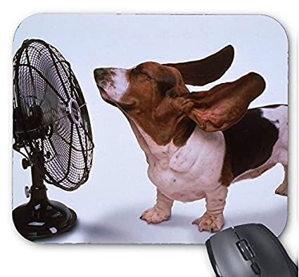 Image result for cartoon image  of someone being blown by fan