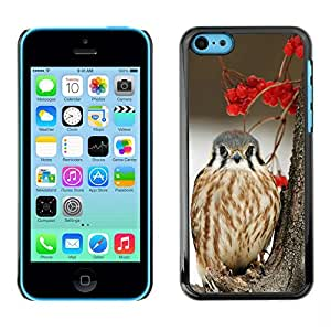 Plastic Shell Protective Case Cover || Apple iPhone 5C || Snow Bird Hawk Prey @XPTECH