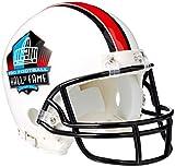 Riddell NFL Hall of Fame Replica Mini Helmet, Medium, Black/White