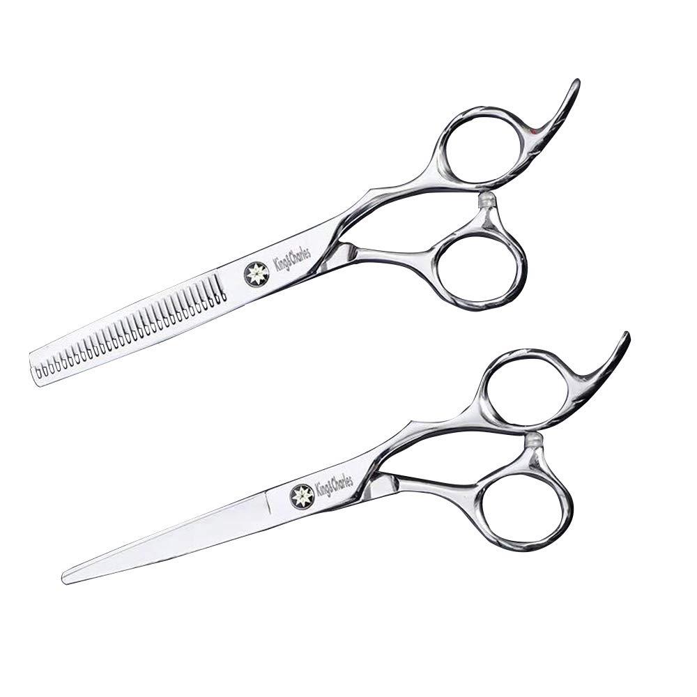 King&Charles High-end professional hairdressing scissors 6.5 inch- 1 Straight Edge Hair Scissor, 1 Texturizing Thinning Shears