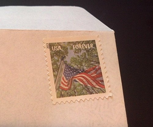 (500 Forever Stamped Envelopes - #10 Security Self Seal Envelopes (4-1/8 x 9-1/2 inch))