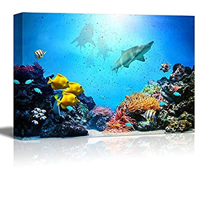 Gorgeous Expertise, With Expert Quality, Underwater Scene Coral Reef Colorful Fish Groups Sharks and Sunny Sky Shining Through Clean Ocean Water High Resolution