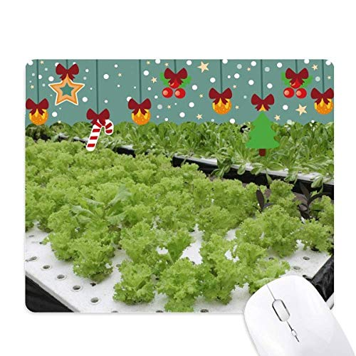 - Waterless Cultivated Vegetables Mouse Pad Game Office Mat Christmas Rubber Pad