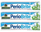 Nature's Answer Periobrite Natural Toothpaste, Wintermint, 4 Ounce, 3 Count