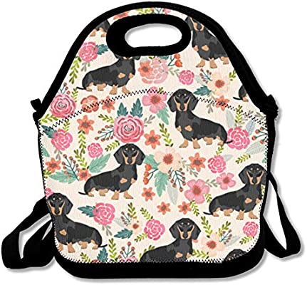 3eeefef2b1a8 Amazon.com: Malsjk8 Wiener Dog Art of Lunch Insulated Lunch Bag for ...