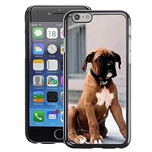 A-type Arte & diseño plástico duro Fundas Cover Cubre Hard Case Cover para iPhone 6 (Boxer Breed Dog Brown Fur Puppy)