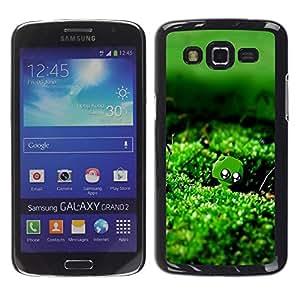 Smartphone Rígido Protección única Imagen Carcasa Funda Tapa Skin Case Para Samsung Galaxy Grand 2 SM-G7102 SM-G7105 Nature Green Moss Water / STRONG